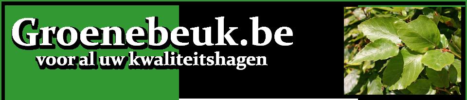 Groenebeuk.be